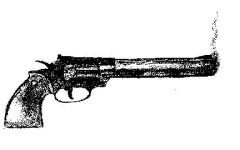 What Mental Health Means For Guns