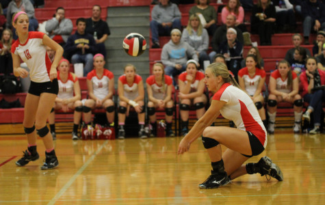 Nelson Leads Little Hawks To Semifinals