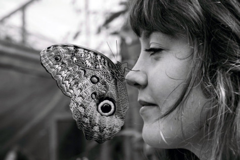 "One of the photographers , Mackenzie Pardy, poses with a ""Owl Butterfly"" on her nose."