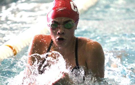 Girls Swimming and Diving Finished Season out of State Tournament