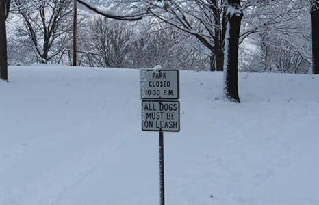 Ban on Sledding
