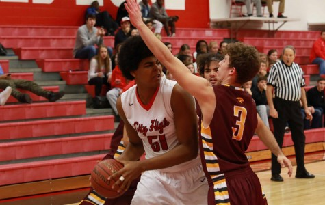 Little Hawks Top Mount Pleasant