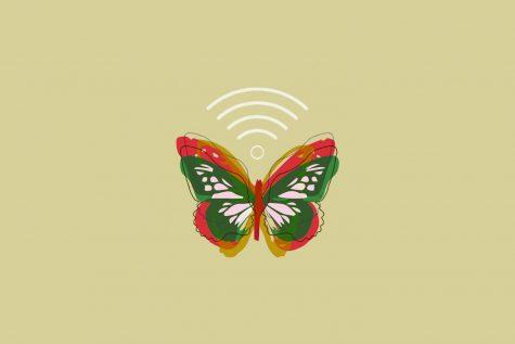 Unsociable Butterflies