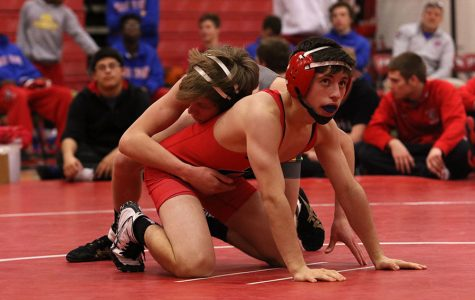 Wrestling Dominates the District Meet