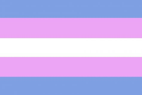 What it Means to be Trans*