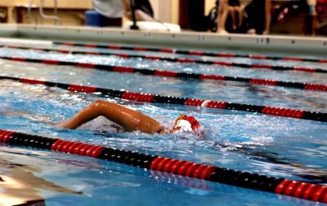 Girls Swimming Returns, Larger Than Ever