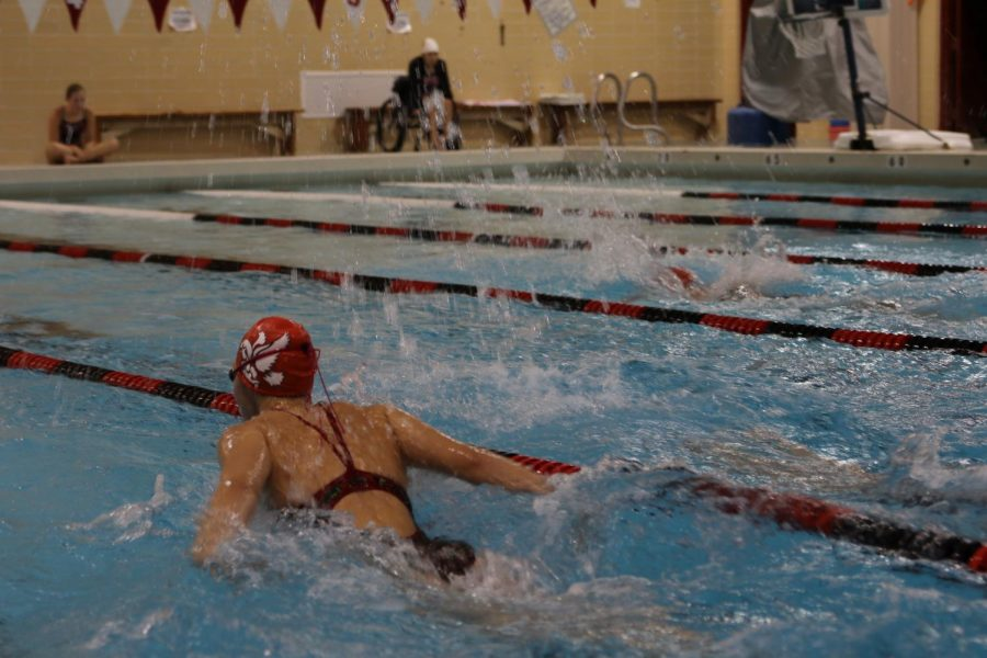 Carly Weigel '20 swims the butterfly at the Little Hawks' dual against Williamsburg.