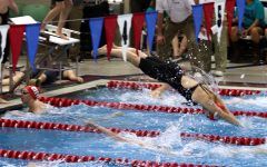 Girls Swimming Breaks Records, Places 16th at State