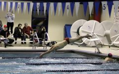 Swimmers Slowed by Linn-Mar