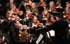 Orchestra to Hold Annual Dessert Concert