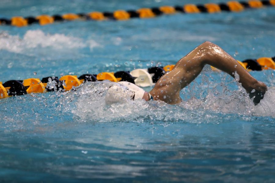 Isaac Weigel swims the 500 Free during the Boy's State Swim Meet. Weigel placed 4th in this event.