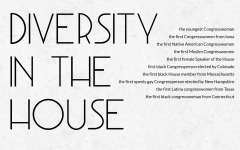 Diversity in the House