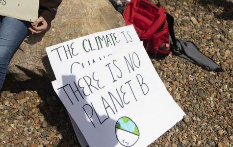 Students Continue to Strike for the Climate