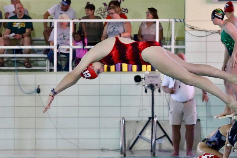 Johanna+Kopelman+%2721+diving+into+the+pool+to+swim+a+100+meter+breastroke.