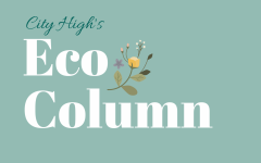 The Eco Column: What's Really Happening to Our Recycling?