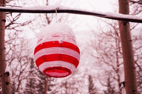 Festive lantern on a snowy afternoon.