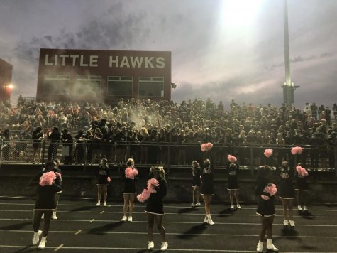 Little Hawk Student Section and Cheerleaders vs. Dowling Catholic